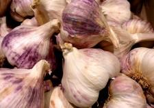 garlic-643396_640