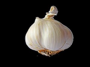 garlic-744611_640
