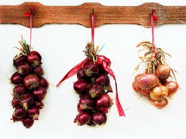 onions-748419_640