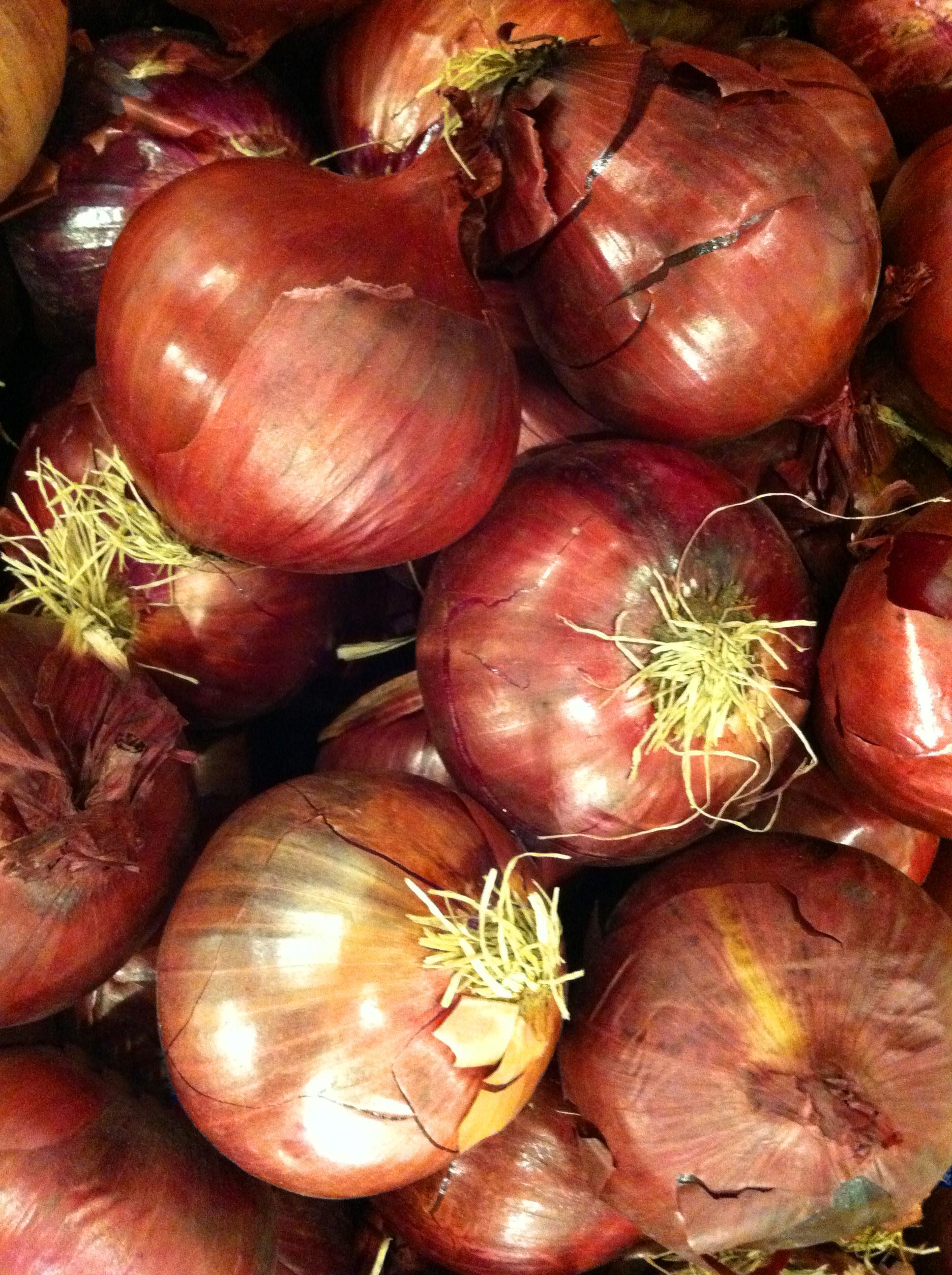 onion red MGD©
